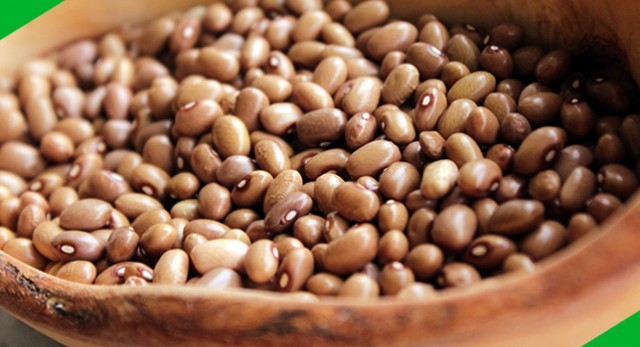 Governo brasileiro autoriza importação de feijão para reduzir o preço