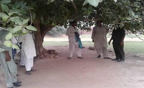 Garoto-cristão-e-morto-e-pendurado-em-árvore-no-Paquistão